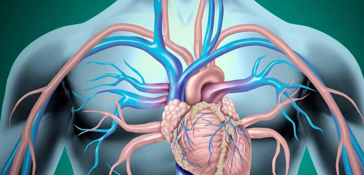 Clínica de Angiologia